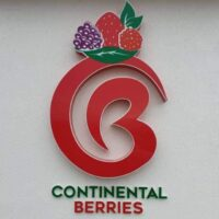 Continental Berries